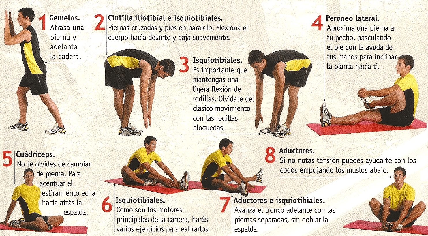 tabla-ejercicios-calentamiento